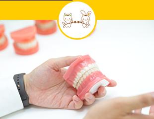 様々な歯並びの矯正に対応